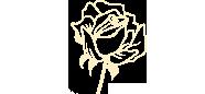 Delle Rose Rosenfeld